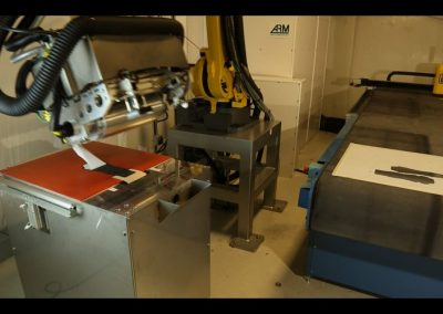 ARM Automated removal of backing paper